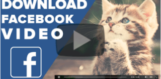 Download Videos From Facebook To Computer Online