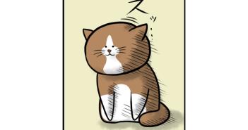 ネコあるあるマンガ