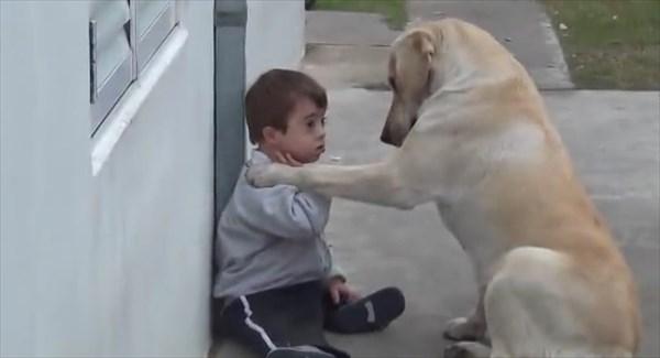 dog3_R