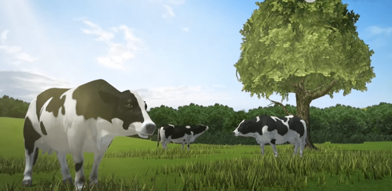 summer field illusion for cows in VR goggles