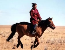 Image result for julia roberts horse