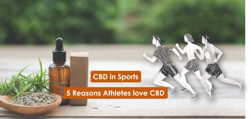 CBD in Sports_ why athletes love cbd