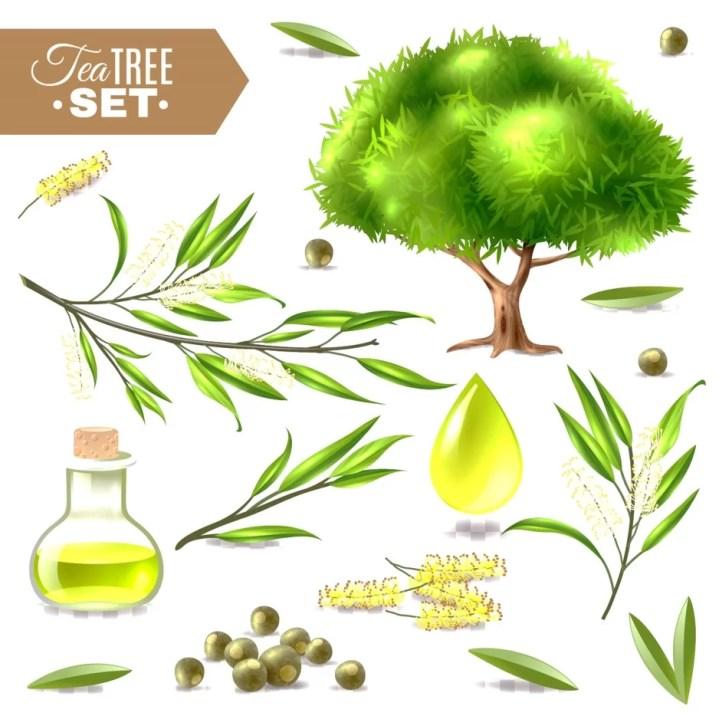tea tree oil to remove mole on skin