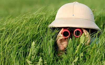 explorer-with-binoculars copy