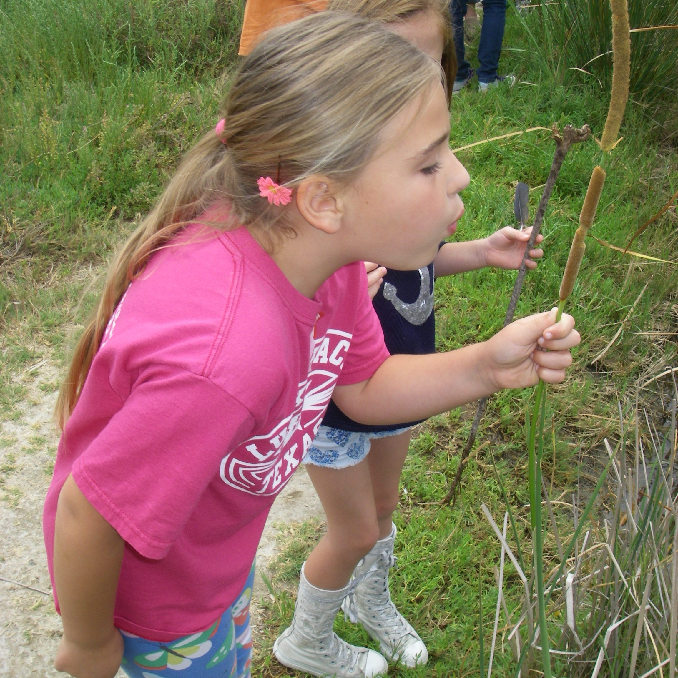 Summer Camp 2016 blowing away catthail seeds