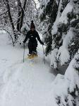 snowshoe sara knome