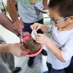 中醫師培團隊特別調製祛濕消暑打通經絡的足浴包