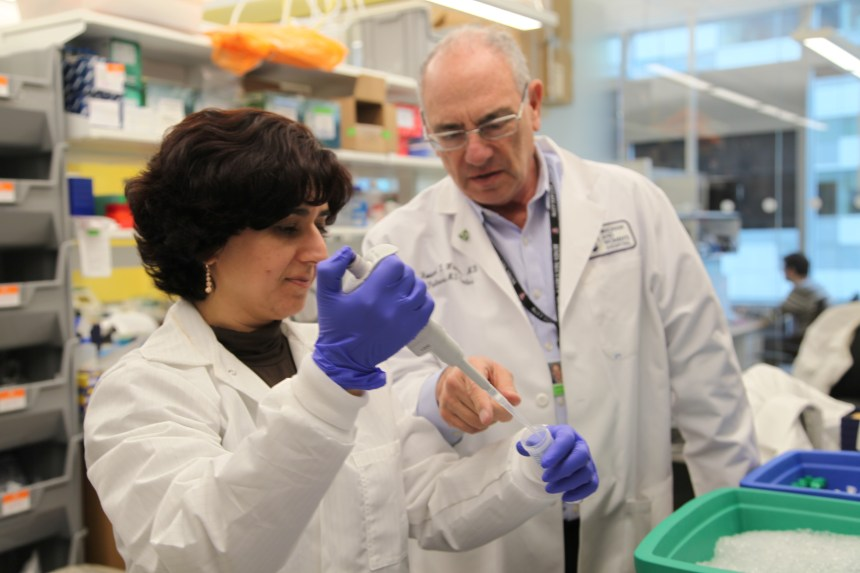 Howard Weiner and Galina Gabriely, of the Ann Romney Center for Neurologic Diseases, received an Innovation Discovery Grant to further study how the immune system may be used to suppress tumor growth.