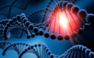 DNA-Experiment