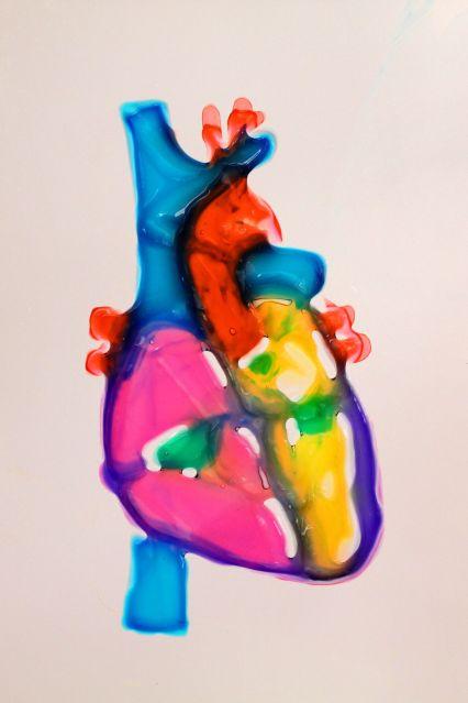 bioengineered heart