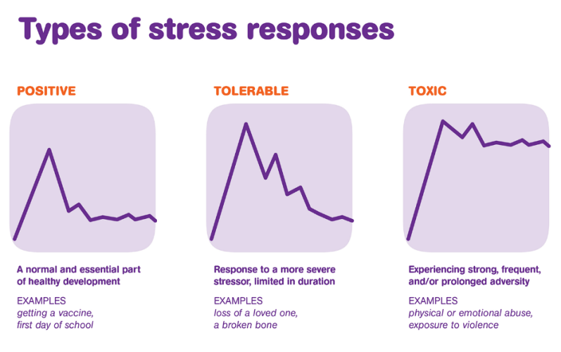 Types of stress response chart