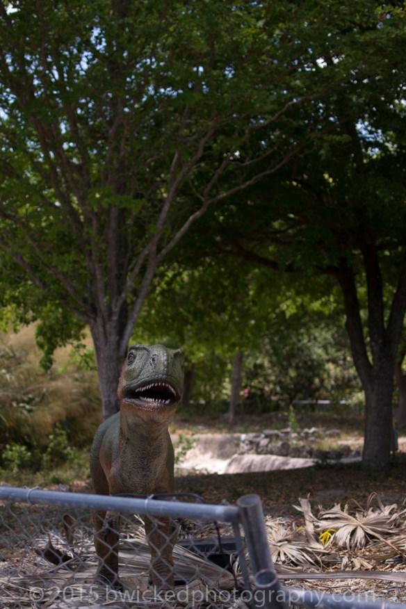 2015 Dino Egg Safari-3157