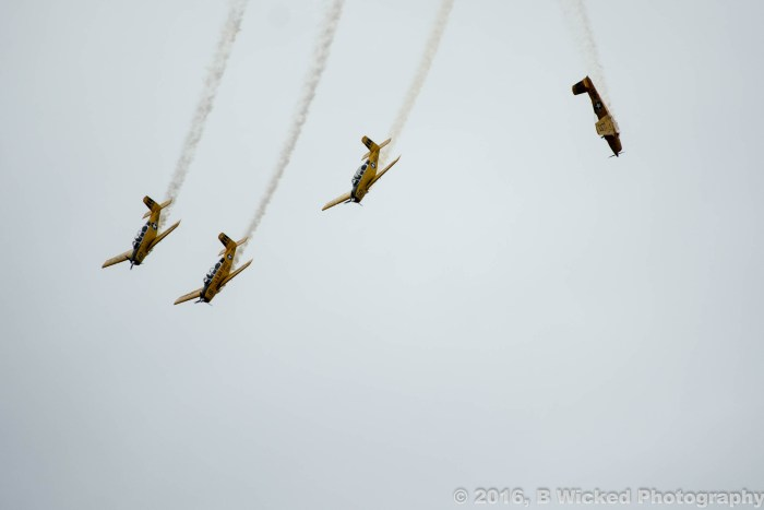 2016-wings-over-homestead-1076
