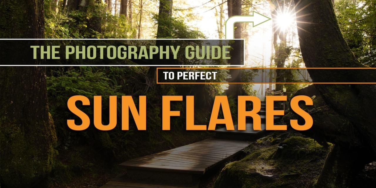The Sun Flare Photography Guide – How To Capture Better Sun Flares