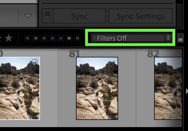 filmstrip-filter-in-lightroom