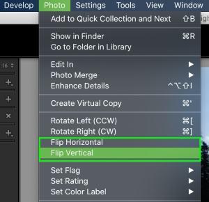top-menu-flip-image-options