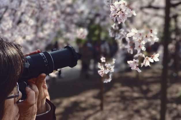 Camera-wont-focus-tips-13