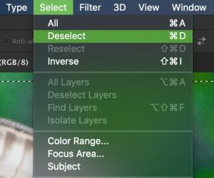 how-to-deselect-in-photoshop-3