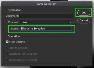 how-to-copy-selection-to-new-layer-in-photoshop-15