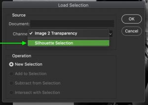 how-to-copy-selection-to-new-layer-in-photoshop-19