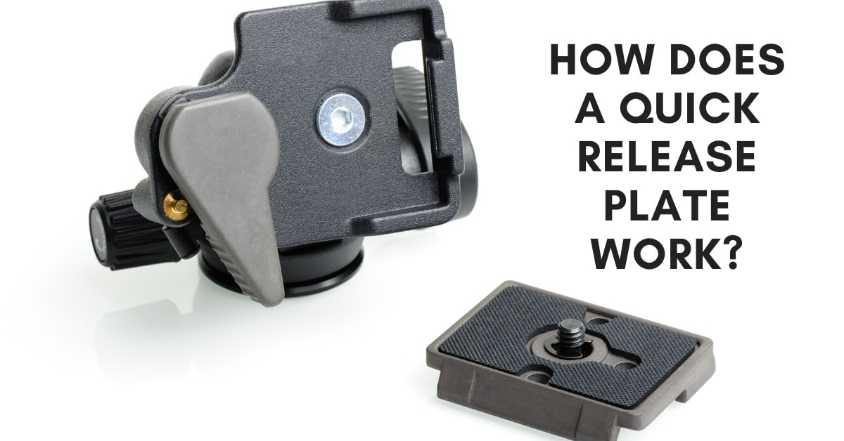 How Do Tripod Quick Release Plates Work?