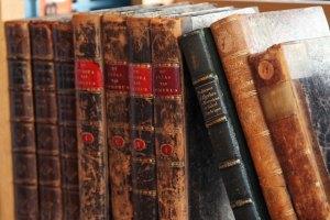 My shelvs o' books
