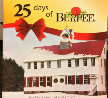 The perfect gift for a anyone who loves plants. Twenty-days of new introduction seeds from Burpee Gardens in a beautiful calendar!
