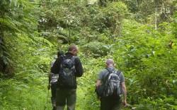 Amani Nature Reserve