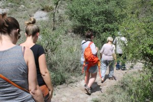 Ngorongoro Walking tours