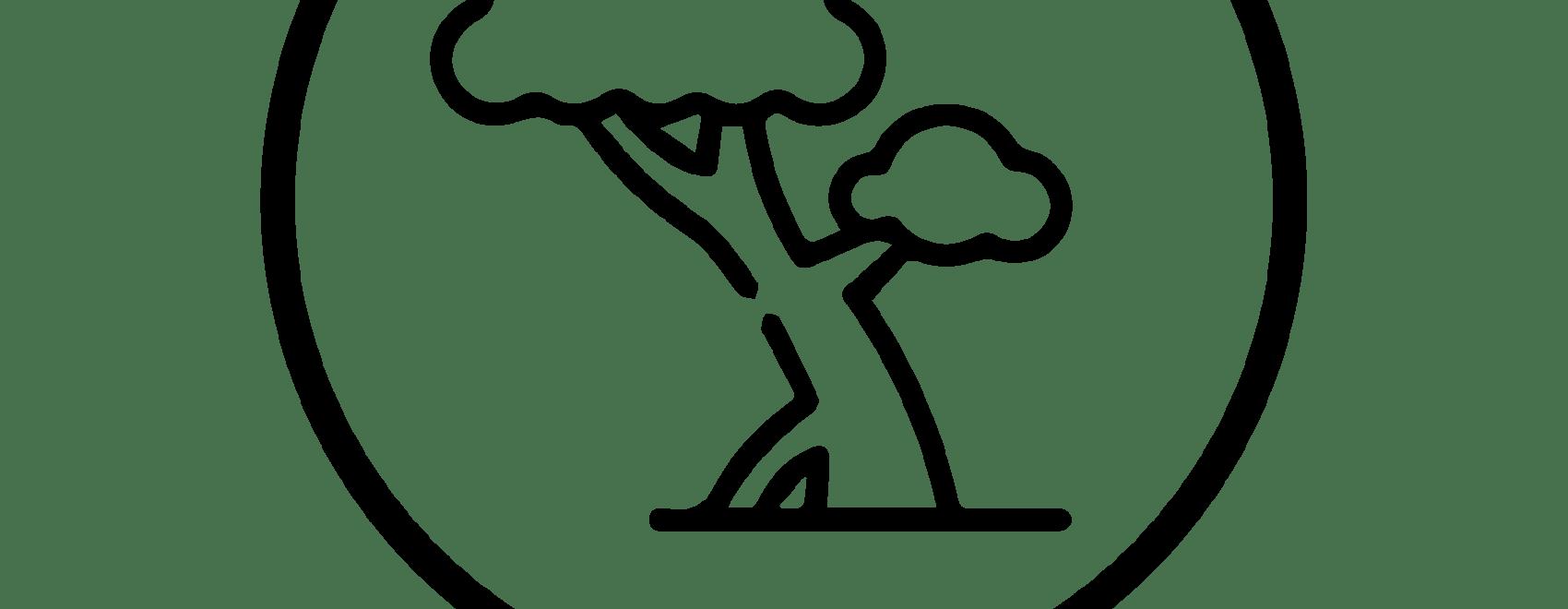 Sorry Tree logo