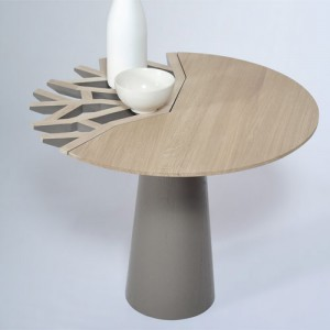 table-basse-canopee-drugeot-labo-7