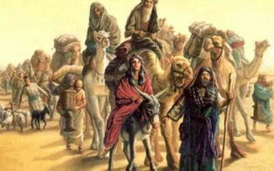 Sakeman uit Egipte geskop