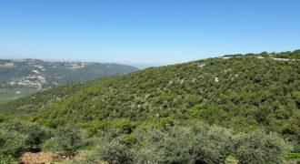 Land for Sale Bejjeh Jbeil Area 4994Sqm