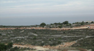 Land for Sale Gharzouz Jbeil Area 1668Sqm