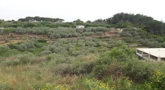 Land for Sale Mrah Chdid Batroun Area 3252Sqm