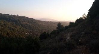 Land for Sale Lehfed Jbeil Area 6198Sqm