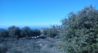 Land for Sale Bejjeh Jbeil Area 17032Sqm