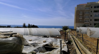 Land for Sale Blat ( Qartaboun ) Jbeil Area 2437Sqm