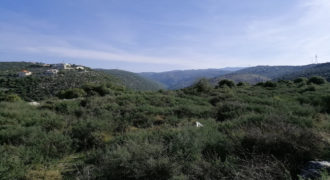Land for Sale Bejjeh Jbeil Area 3650Sqm