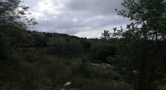 Land for Sale Bejjeh Jbeil Area 800Sqm