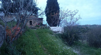 Land for Sale Boqsmaiyya Batroun Area 1211Sqm