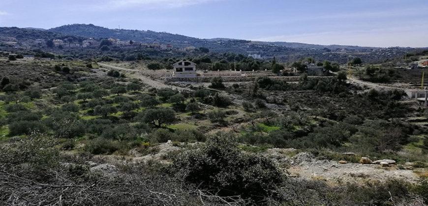 Land for Sale Racha Batroun Area 2793Sqm