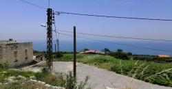 Land for Sale Berbara Jbeil Area 1500Sqm