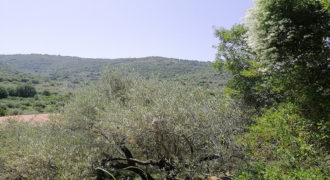 Land for Sale Ain Kfaa Jbeil Area 1082Sqm