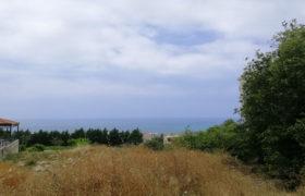 Land for Sale Blat Jbeil Area 650Sqm