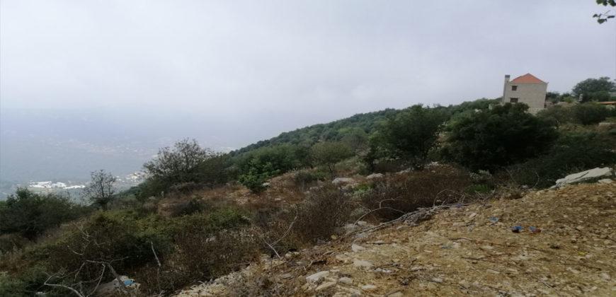 Land for Sale Ras Osta Jbeil Area 8013Sqm