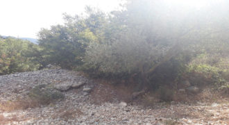 Land for Sale Ain Kfaa Jbeil Area 2007Sqm