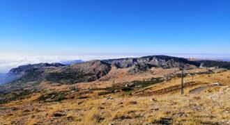 Land for Sale Tannourine – Faouqa – ( Msateb -Ain Et Tillaje ) Batroun Area 2450Sqm.