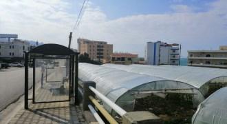 Land for Sale Halat Jbeil Area 5468Sqm