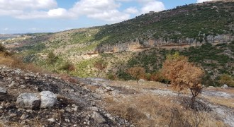 Land for Sale Aabeidat Jbeil Area 1720Sqm